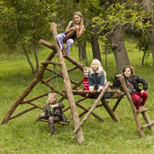 natural wooden jungle gym with swings