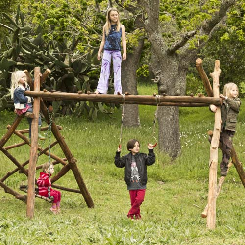 wooden jungle gym with monkey bars